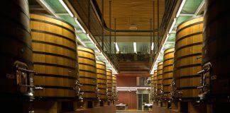 В Испании научились делать вино, от которого не болит голова