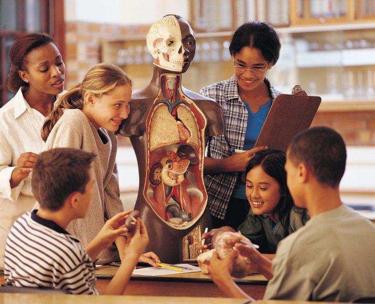 ВАликанте «оживят» трупы для подготовки будущих врачей