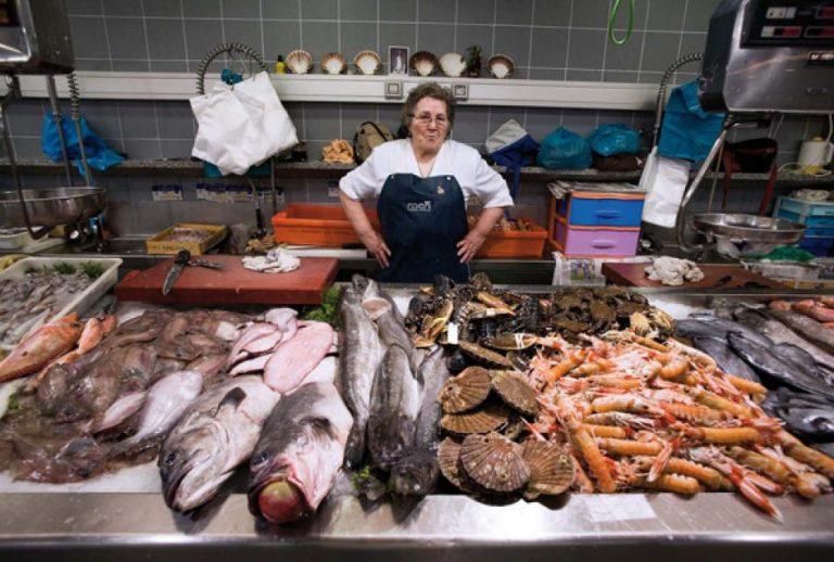 Рыба иморепродукты— словарь, сезонность, особенности