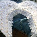 Крылья (2)