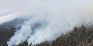 На Тенерифе горит заповедный лес