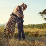 Примирение с внутренним Хищником