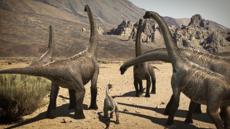 Выставка «Мир Динозавров» наТенерифе