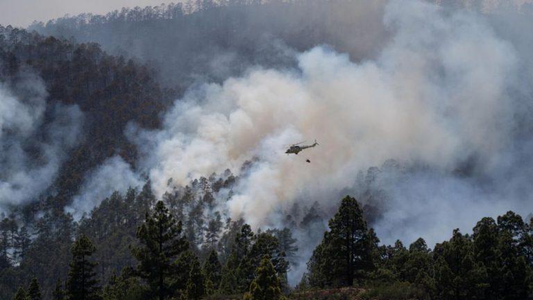 Пожар вАрико находится под контролем, ауровень опасности снижен допервого